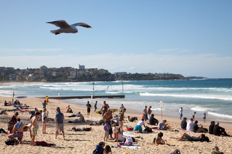 #Manly #Beach #Sydney With Kids via brunchwithmybaby.com