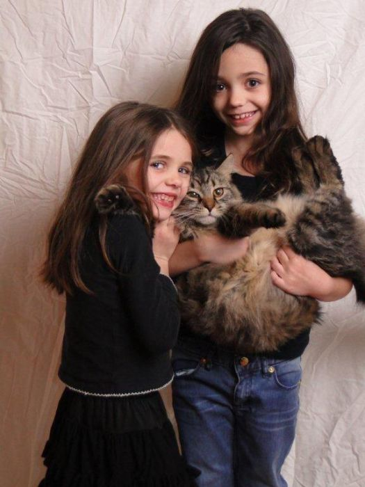 Camille, 6, Amina, 9, Elvis (the cat), 2