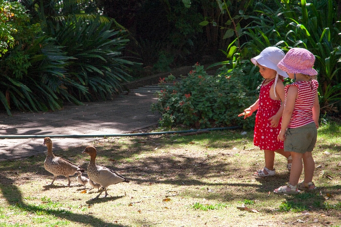 The #Teahouse #Camellia #Gardens, #kidfriendly #restaurants #Sydney via brunchwithmybaby.com