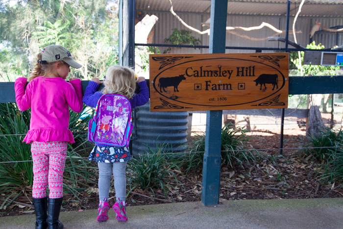 #Calmsley Hill City Farm via brunchwithmybaby.com