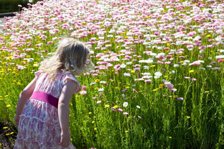 Royal Botanic Gardens via brunchwithmybaby.com
