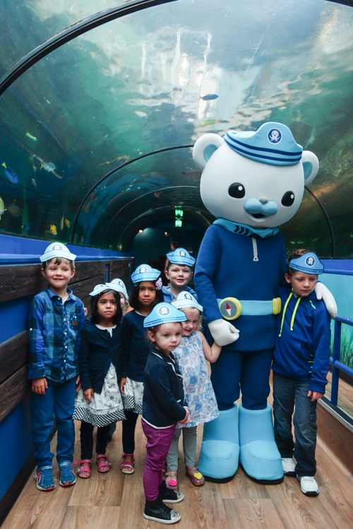 #Octonauts at #Sydney #SeaLife #Aquarium via christineknight.me