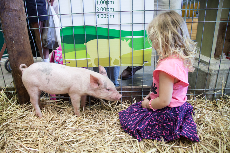 #Sydney Royal #Easter Show Guide For Little Kids via christineknight.me