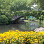12 Ways To Entertain Kids In Central Park: Best of NYC for Kids