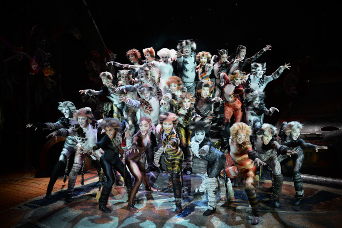 Cats The Musical Sydney via christineknight.me