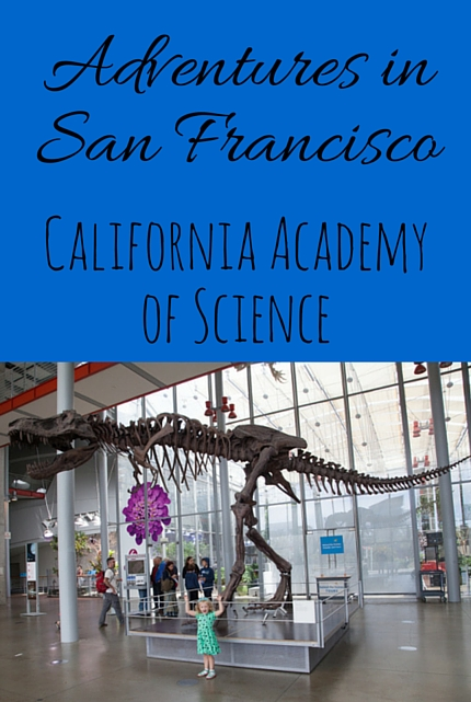 California Academy of Science via christineknight.me