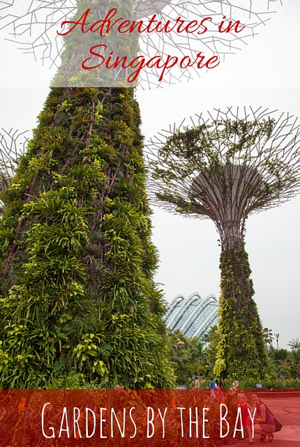 Gardens by the Bay, Singapore via christineknight.me