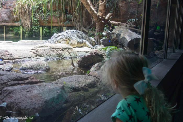 Wild Life Sydney Zoo via christineknight.me