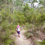 Tips for Bushwalking with Preschoolers