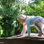 Melbourne: The Ian Potter Foundation Children's Garden