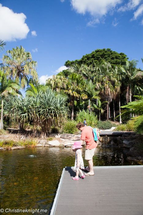 The Australian Botanic Gardens, Mount Annan via christineknight.me