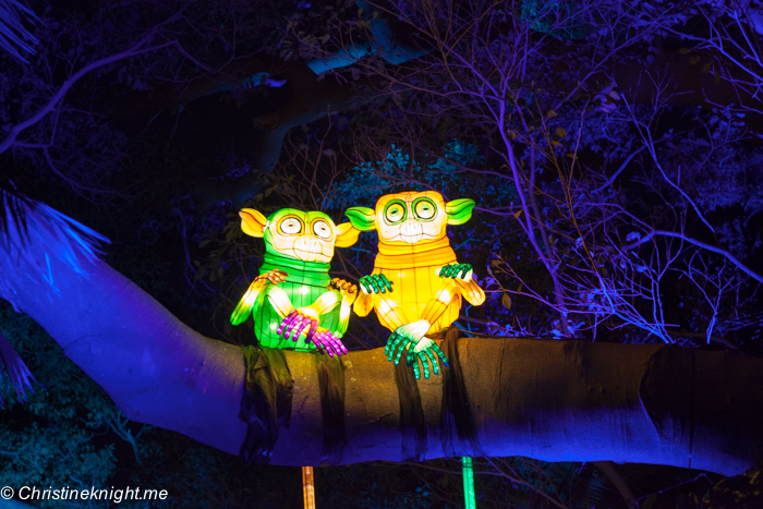 Vivid Sydney at Taronga Zoo via christineknight.me