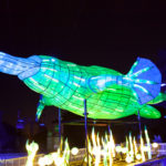 12 Reasons Why Vivid Sydney at Taronga Zoo Is The Best Place To Take Kids