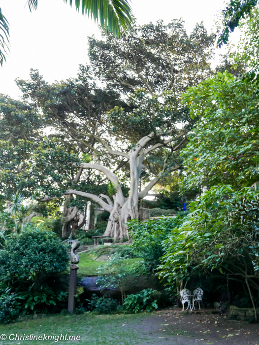 Wendy's Secret Garden, Sydney via christineknight.me