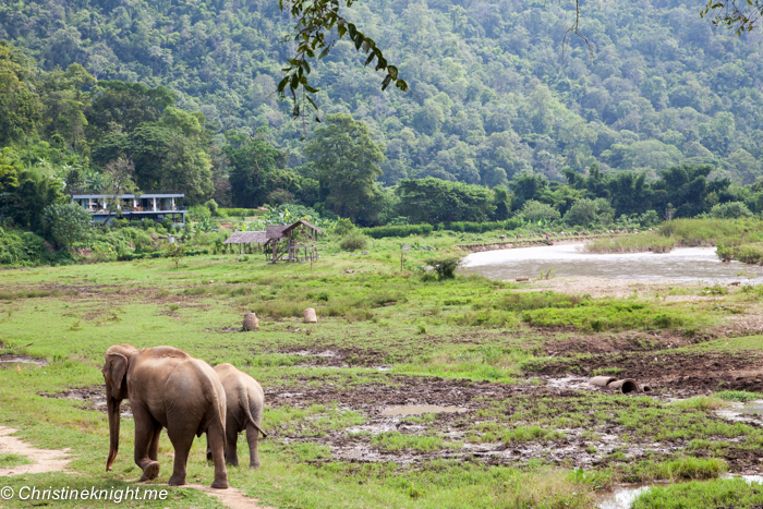 The Elephant Nature Park in Chiang Mai, Thailand ...
