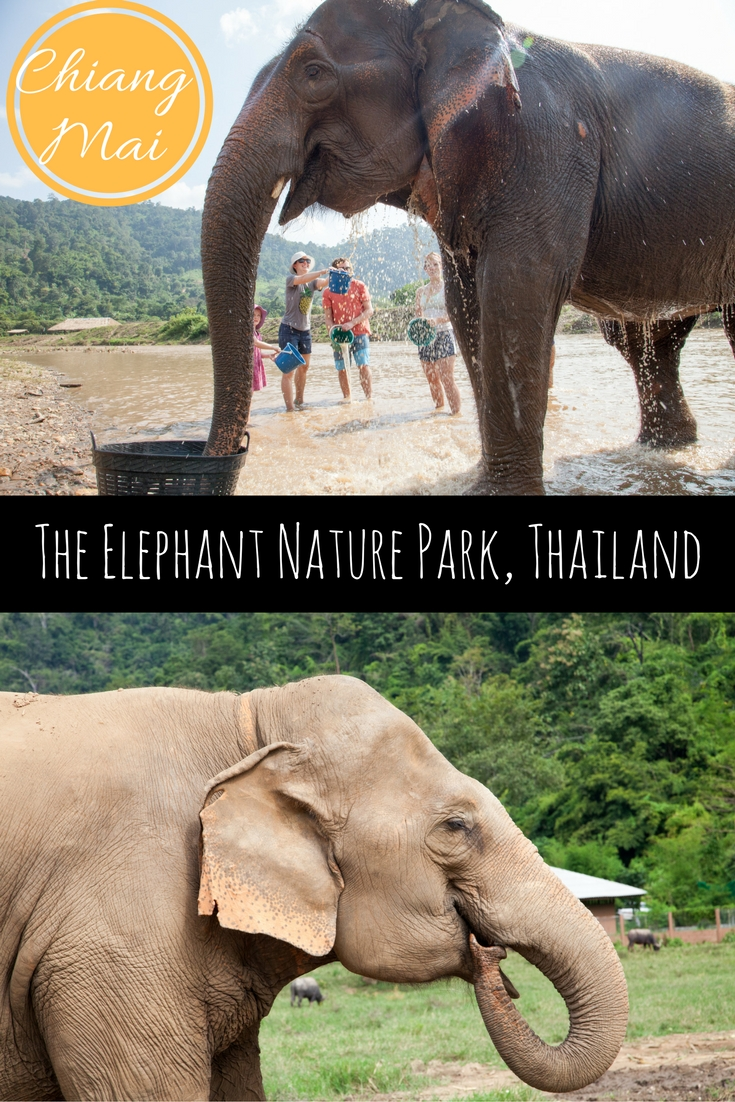The Elephant Nature Park in Chiang Mai, Thailand - Adventure