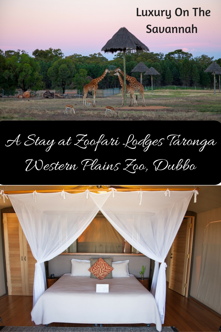 A Stay at Zoofari Lodges Taronga Western Plains Zoo, Dubbo, Australia
