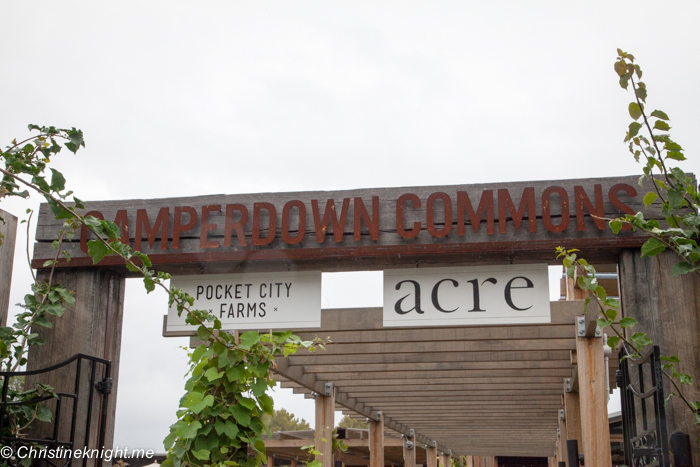 Camperdown Commons, Sydney