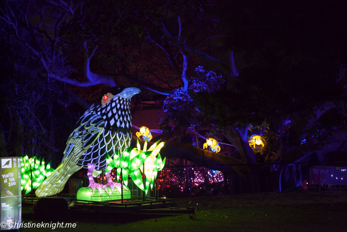 Vivid at Taronga Zoo, Sydney Australia