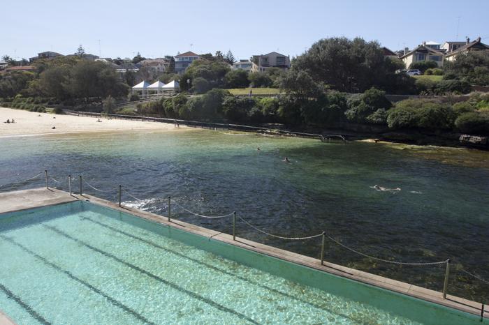 Clovelly Beach, Sydney Australia