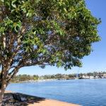 Glebe Foreshore Walk, Sydney