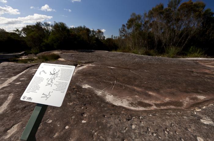 Ku-rin-gai Chase National Park, Sydney, Australia