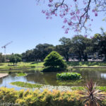 Victoria Park, Sydney CBD