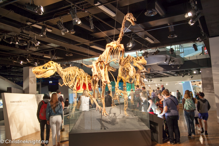 Foyer Museum Victoria : Australia archives adventure baby