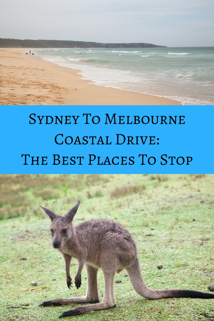 Where To Stop On The Sydney to Melbourne Coastal Drive
