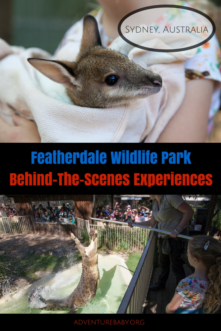 Featherdale Wildlife Park Behind-The-Scenes Experiences, Sydney, Australia