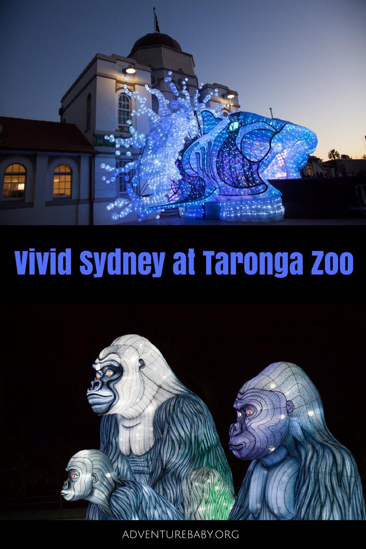 Vivid Sydney at Taronga Zoo, Sydney, Australia