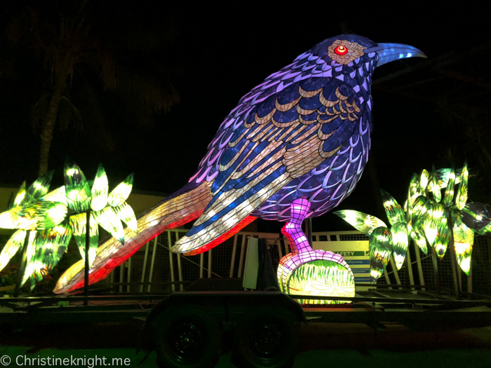 Vivid Sydney at Taronga Zoo