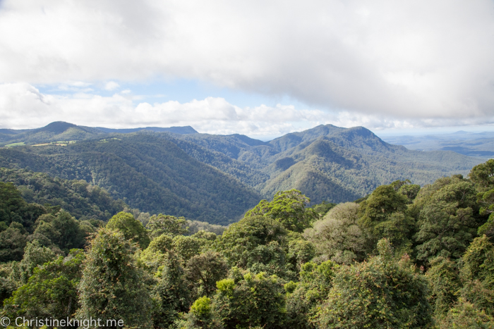 Dorrigo National Park, Coffs Harbour