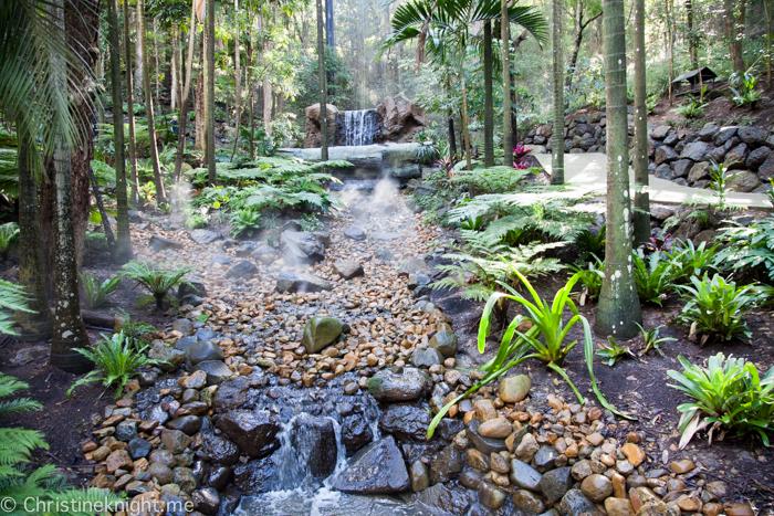 Currumbin Wildlife Sanctuary, QLD, Australia