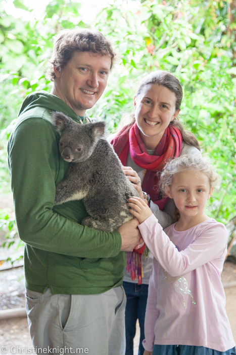 Currumbin Wildlife Sanctuary, QLD, Australia