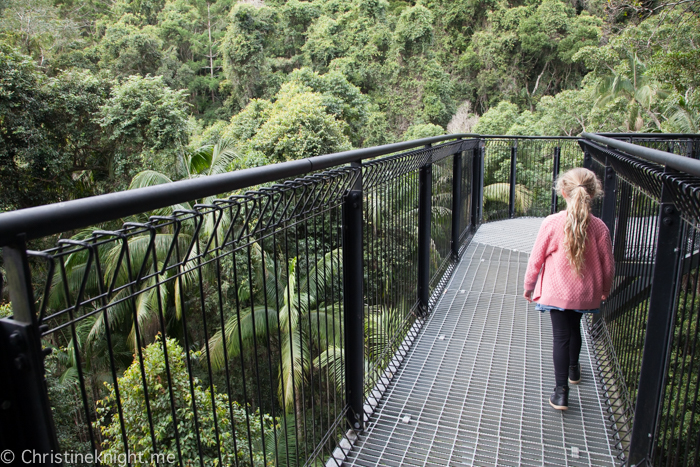 Mount Tamborine Skywalk, Gold Coast, Qld, Australia