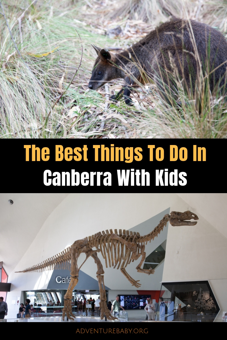 The Best Things To Do In Canberra With Kids