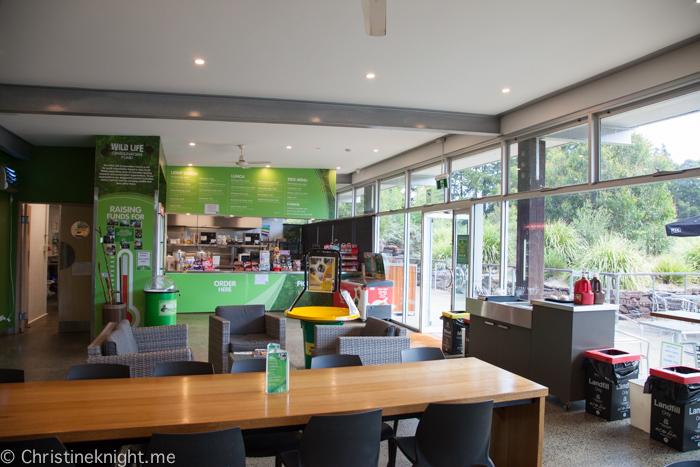 Illawarra Fly, Sydney, NSW, Australia