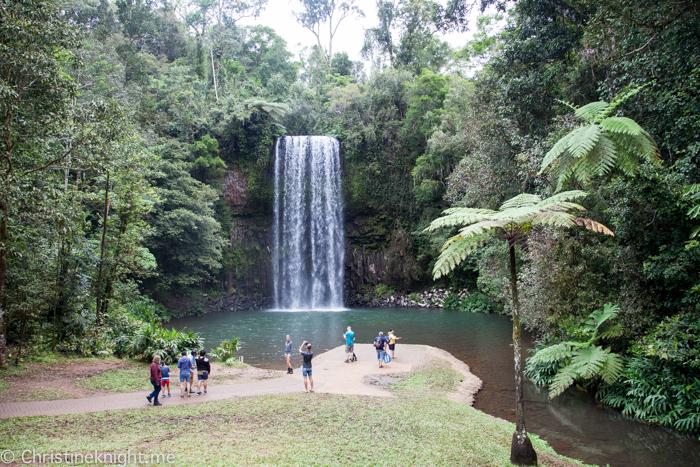 Millaa Millaa Falls, Atherton Tablelands, Cairns, Australia