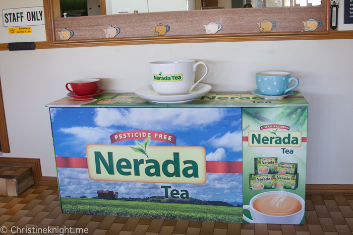 Nerida Tea Plantation, Atherton Tablelands, Cairns, Australia