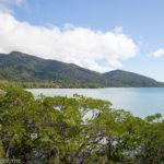 Visiting the Daintree Rainforest