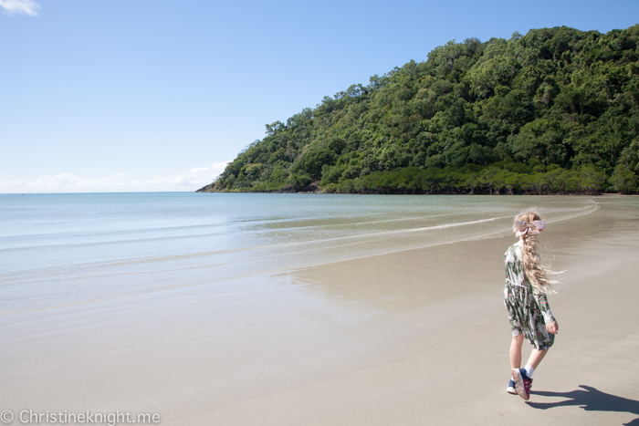 Daintree Rainforest