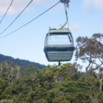 A Journey Above The Trees With Kuranda Skyrail Rainforest Cableway