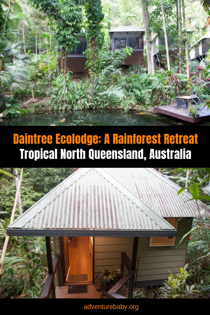 Daintree Ecolodge, Qld, Australia