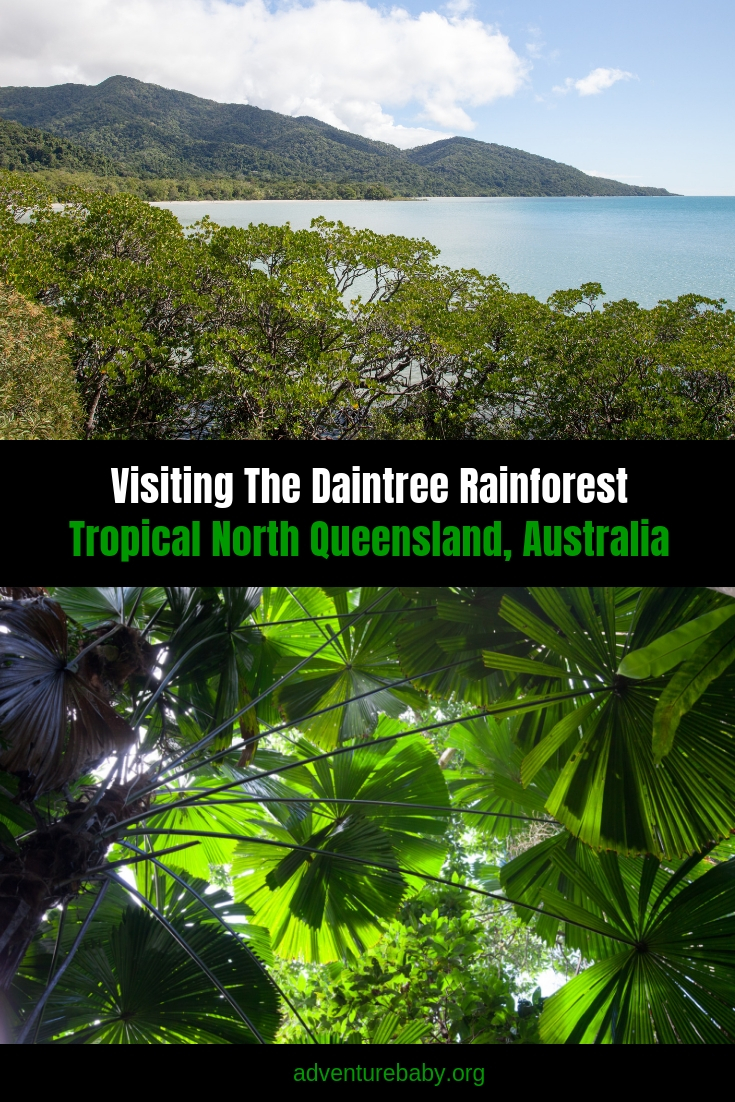 The best things to do in the Daintree Rainforest, Cairns, Qld, Australia