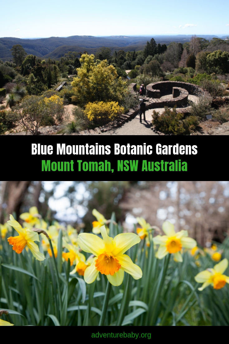 Botanical Gardens Blue Mountains
