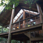 The Canopy Treehouses: Unique Hotels In Cairns