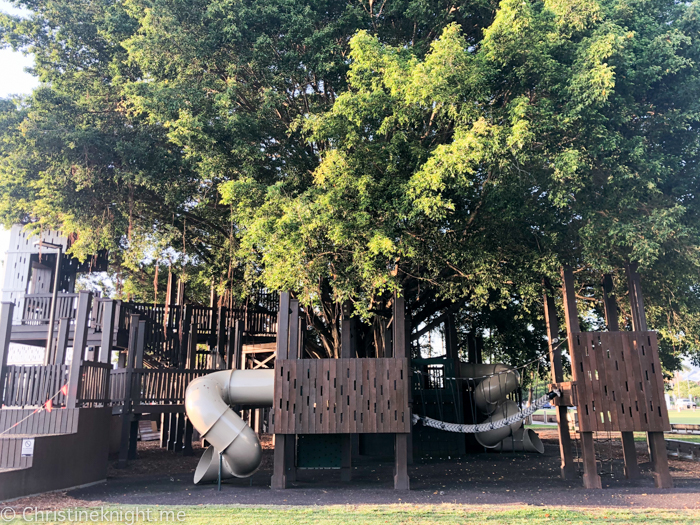 Cairns Fig Tree Playground