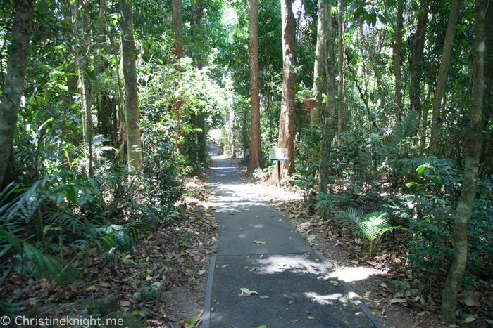 Josephine Falls Cairns