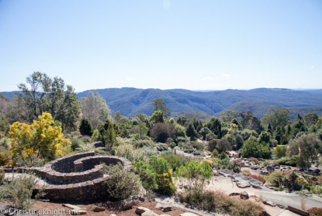 Botanical Gardens Blue Mountains